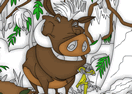 Timon and Pumbaa Coloring Book