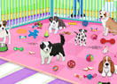 Puppy Pet Care