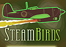 Steam Birds Survival