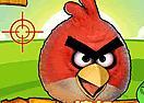 Angry Birds Hunting