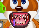 Animals Dentist